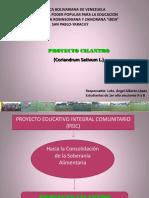 Proyecto Cilantro