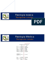 Transporte Celular Membrana Celular Difusion Simple y Facilitada