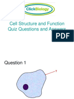 2cell Quiz 2