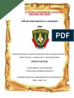 Monografía e Informe