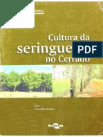 Cultivo Da Seringueira No Cerrado