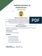 Evaluacion Genetica de Caracteres de Importancia Economica en Alpacas Vicugna Pacos Huacaya Del Distrito de Pilpichaca de La Provincia de Huaytara Region Huancavelica