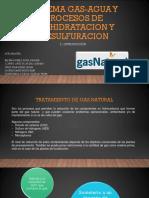 Sistema Gas-Agua y Procesos de Deshidratacion y Desulfuracion