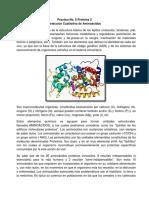 Practica No 5 BIOQUIMICA.docx