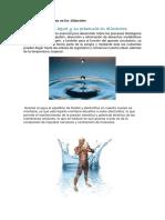 Importancia Del Agua en Los Alimentos