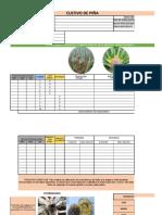 Tabla de Datos Pina V5 SMA