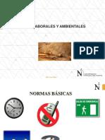 3.- Riesgos Laborales.pdf