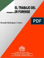 Auditor Forense - Guía Para El Trabajo