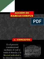 Grupo1 - Mie - Acción de Hábeas Corpus