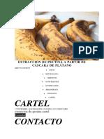 Extracción de Pectina a Partir de Cáscara de Plátano Proyecto