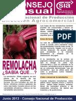 remolacha_05-07-13