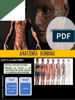 Anatomía, Fisiología e Higiene