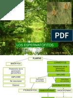 III Clase - Botánica Sistemática