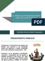 Proceso Presupuestario en El Sector Publico