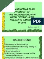 30343596 Marketing Plan