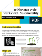 maui sustainability- nitrogen cycle presentation