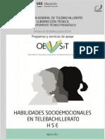 HSE EN TELEBACHILLERATO 2017-F250817155.pdf
