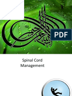 Spinal Cord Injury Introduction