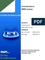 sngpld-131005144232-phpapp01.pdf