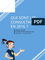 Rapport Enquete Consultants V5
