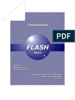 Flash Basico