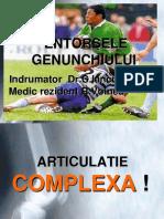 23. Traumatismele Genunchiului (Entorse Genunchi - Menisc) - Dr. Voinea Rares (1)