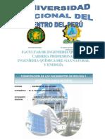 Informe e Composicion de Yacimientos