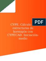 215888429-CYPE-pdf.pdf