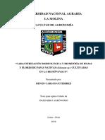 Caract Morf Biometria Hojas Flores Papa Nativas