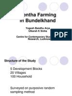 Mentha Farming in Bundelkhand