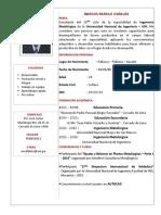 CV Rafaile Corales Mrcos.doc