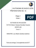 ACT. APLICACION PEMA 1.docx
