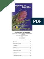 Cultivo Bromeliaceae