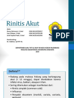 216584461-ppt-Rinitis-AKut.ppt