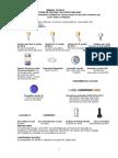 Manual Tecnico Locator Para Raiz 0408