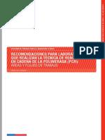Recomendaciones Para Lab. Que Realizan La Técnica de PCR Áreas y Flujos v1
