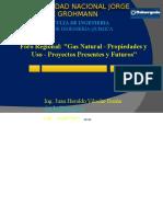 1-Propiedades y Usos Del GN-Juan Viloche (1)