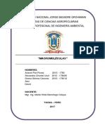 CONCEPTO, CARACTERISTICAS Y METODOS DE MACROMOLECULAS.docx