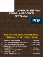 DPT Kuliah I