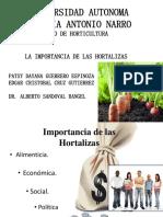 1 Importancia de Las Hortalizas.doc.