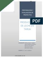 Preparacion y Evaluacion de Proyectos(1)