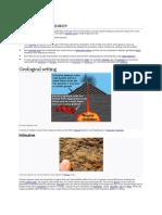 igneous rocks.pdf