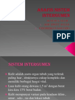 Anafis Sistem Intergumen