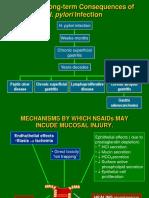 2 Pathogenesis TukakLambung (2)