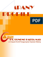Company Propile.ppt Ghm (2)