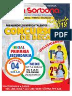 volante CONCURSO DE BECAS.pdf