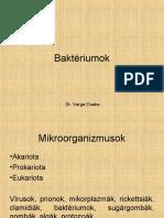 baktériumok.pdf