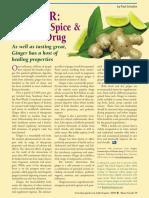 GINGER- Common Spice & Wonder Drug