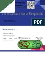 Islas de Patogenicidad Introducciòn 2601 2017-II