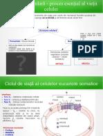 seminar_4.pdf